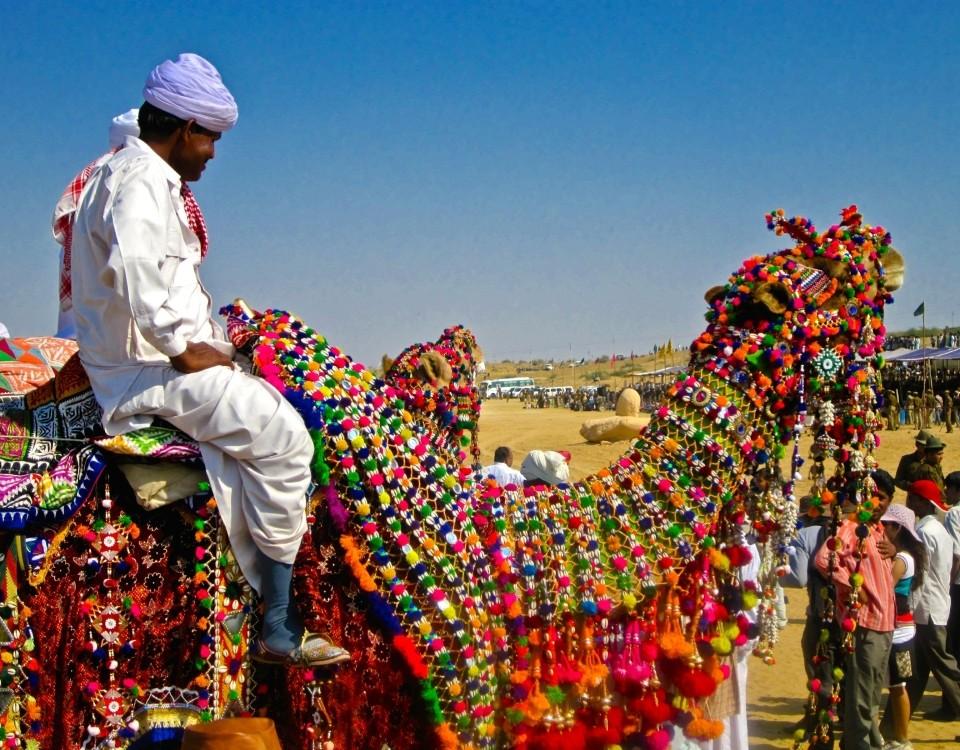 Desert Festival