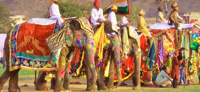elephant-festival-jaipur