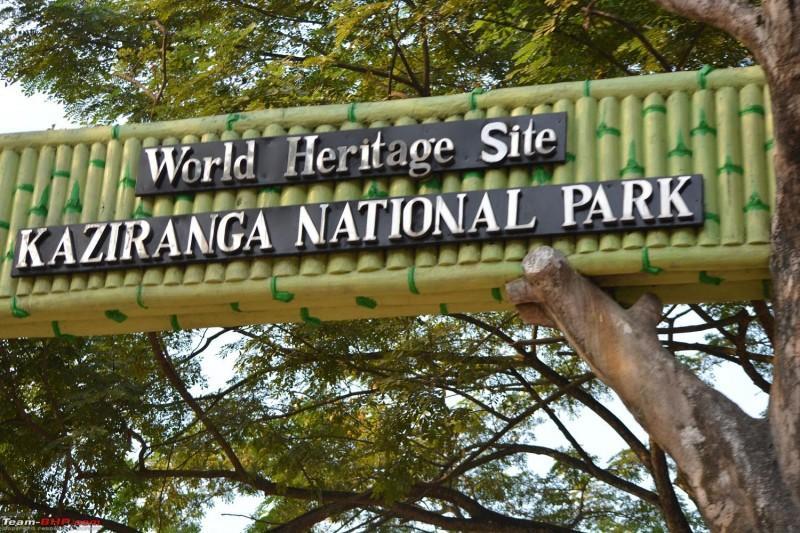 kaziranga park