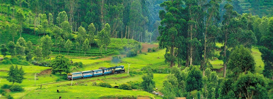 ooty queen of hill station