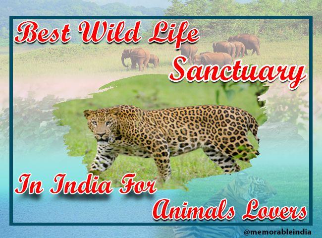 Wildlife sanctuary india