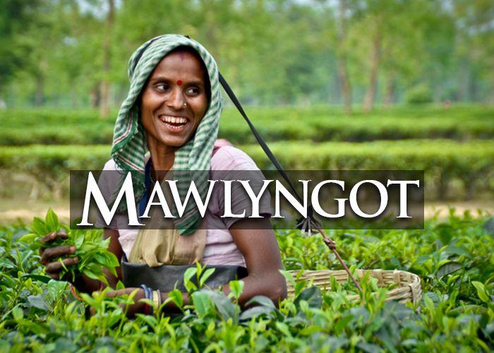 mawlyngot