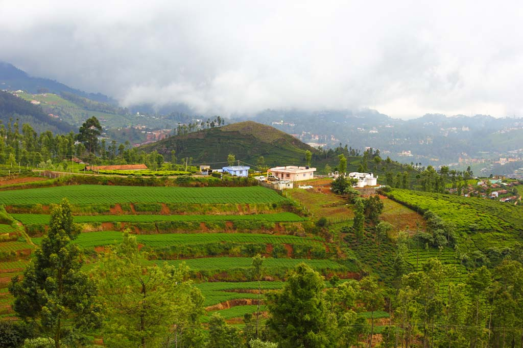 ooty tour packages, ooty trip, tour to ooty