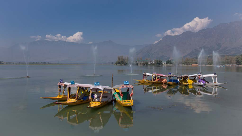 Shikaras on Dal Lake Srinagar Jammu and Kashmir India